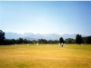 Groot Drakenstein - Sou-Westers batting